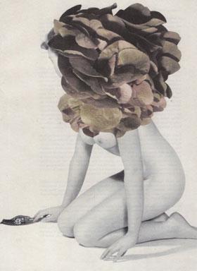 Collage Hortensie