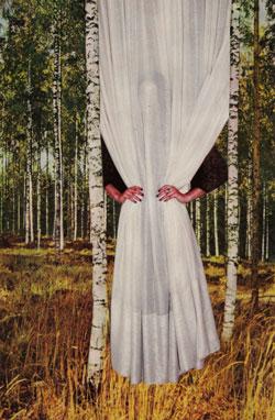 Collage Im Birkenwald